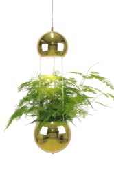 Pendant Mini Planter Brass